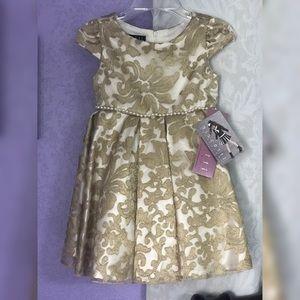Gorgeous Biscotti Damask dress